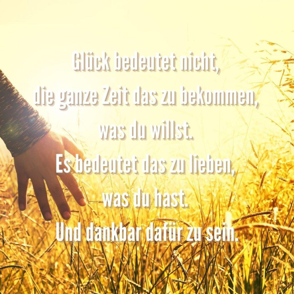 Glück bedeutete nicht, die ganze Zeit das zu bekommen, was du willst. Quelle: healthyfeelings.de, erstellt mit canva.com