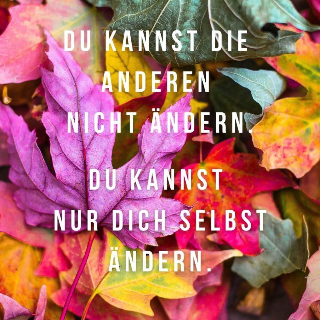 Du kannst die anderen nicht ändern. Du kannst nur dich selbst ändern. Quelle: healthyfeelings.de - erstellt mit canva.com