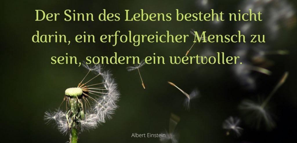 Der Sinn des Lebens besteht nicht darin, ein erfolgreicher Mensch zu sein, sondern ein wertvoller. Bildquelle: healthyfeelings.de - erstellt mit canva.com